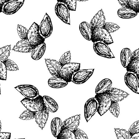 Seamless pattern of hand drawn sketch style almonds isolated on white background. Vector illustration.