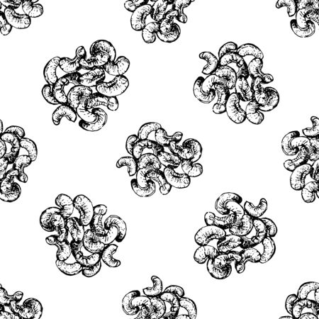 Seamless pattern of hand drawn sketch style cashew nuts isolated on white background. Vector illustration. Ilustrace