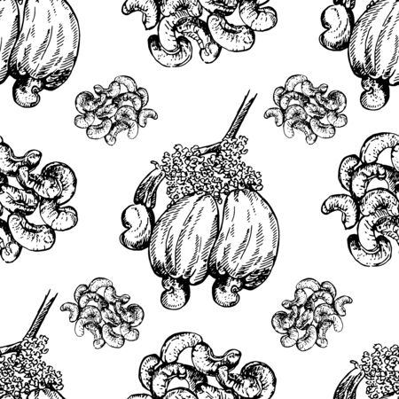 Seamless pattern of hand drawn sketch style cashew nuts isolated on white background. Vector illustration. Illustration