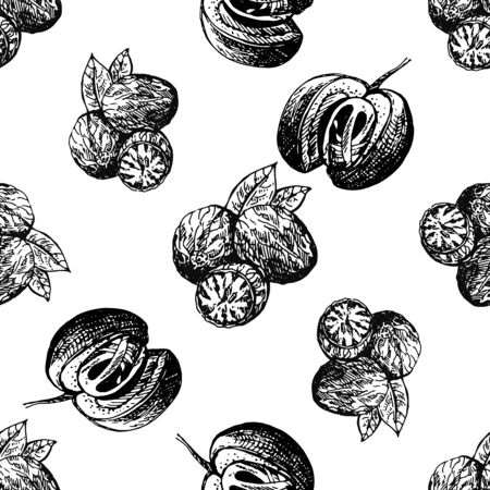 Seamless pattern of hand drawn sketch style nutmegs isolated on white background. Vector illustration.