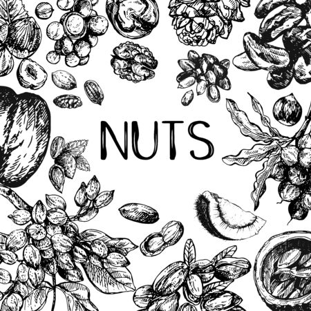 Poster card composition of hand drawn sketch style different kinds of nuts isolated on white background. Vector illustration. Illustration