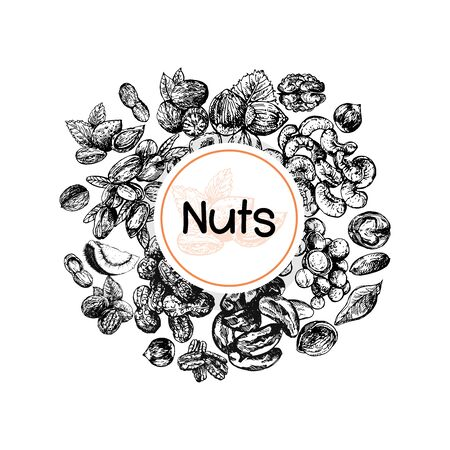Poster card composition of hand drawn sketch style different kinds of nuts isolated on white background. Vector illustration. Ilustrace