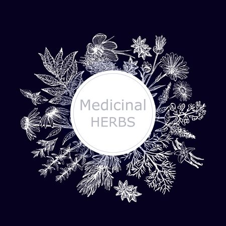 Poster card composition of hand drawn sketch style different kinds of medicinal plants isolated on dark background. Vector illustration.