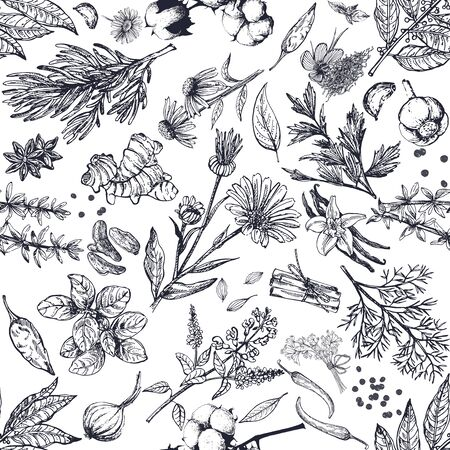 Seamless pattern of hand drawn sketch style different kinds of herbs and spices isolated on white background. Vector illustration.