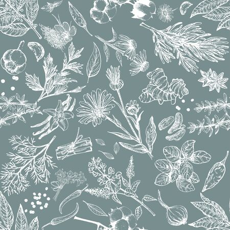 Seamless pattern of hand drawn sketch style different kinds of herbs and spices isolated on dark background. Chalkboard vector illustration.