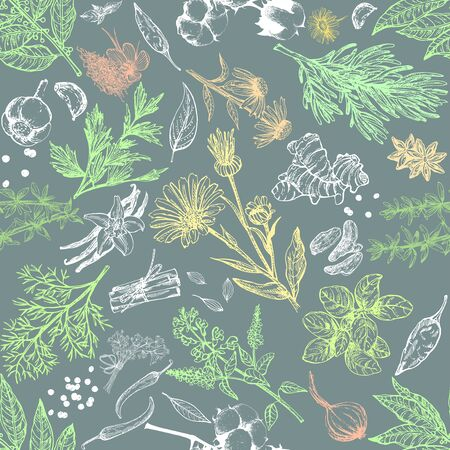 Colorful seamless pattern of hand drawn sketch style different kinds of herbs and spices isolated on white background. Chalkboard vector illustration.