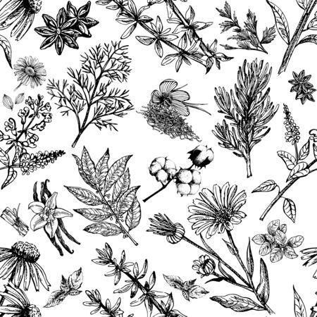 Patrón sin fisuras de estilo boceto dibujado a mano diferentes tipos de plantas aisladas sobre fondo blanco. Ilustración vectorial.