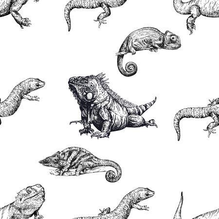 Modèle sans couture de reptiles de style croquis dessinés à la main isolés sur fond blanc. Illustration vectorielle. Vecteurs
