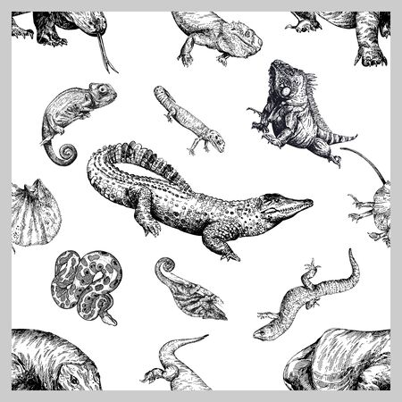 Seamless pattern of hand drawn sketch style reptiles isolated on white background. Vector illustration. Ilustração