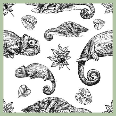 Seamless pattern of hand drawn sketch style chameleons and plants isolated on white background. Vector illustration.