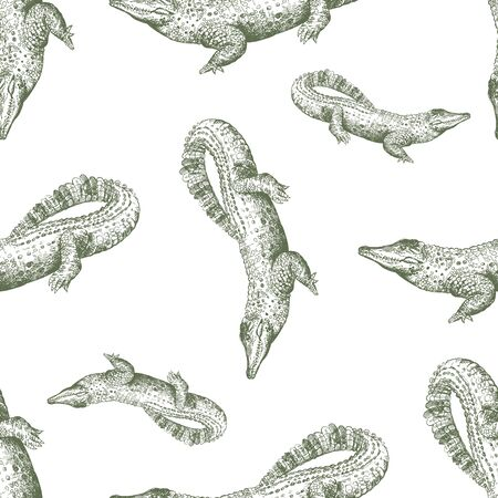 Seamless pattern of hand drawn sketch style crocodiles isolated on white background. Vector illustration. Ilustração
