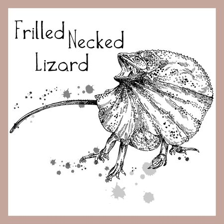 Hand drawn sketch style frilled-necked lizard isolated on white background. Vector illustration. Ilustração