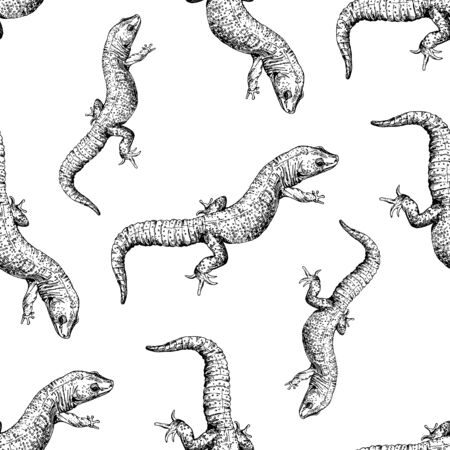 Seamless pattern of hand drawn sketch style geckos isolated on white background. Vector illustration.