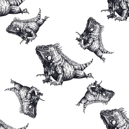 Seamless pattern of hand drawn sketch style iguana lizards isolated on white background. Vector illustration.