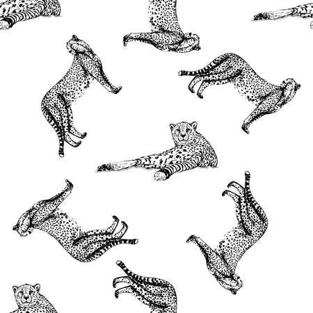 Seamless pattern of hand drawn sketch style cheetah isolated on white background. Vector illustration.