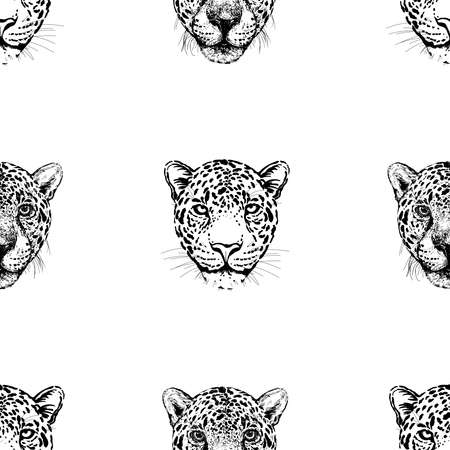 Seamless pattern of hand drawn sketch style portraits of leopards isolated on white background. Vector illustration.