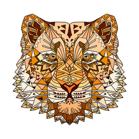 Hand drawn sketch style abstract colorful portrait of snow leopard isolated on white background. Vector illustration.