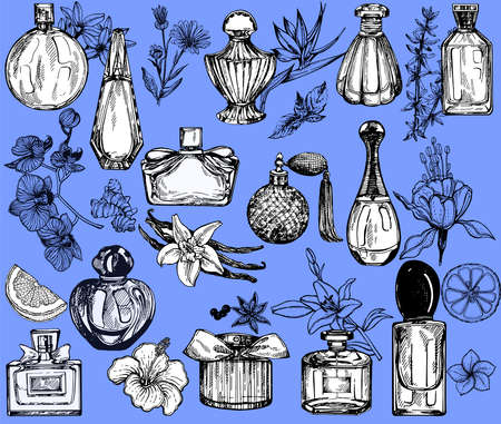Set of hand drawn sketch style bottles of perfume and plants isolated on blue background. Vector illustration.