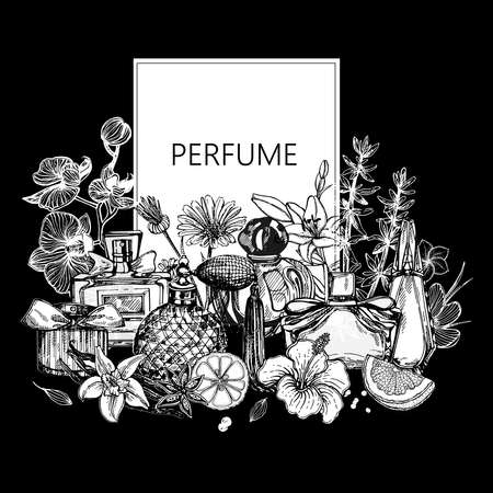 Poster / card / composition of hand drawn sketch style bottles of perfume and plants isolated on black background. Vector illustration.