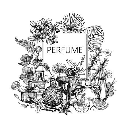 Poster / card / composition of hand drawn sketch style bottles of perfume and plants isolated on white background. Vector illustration.