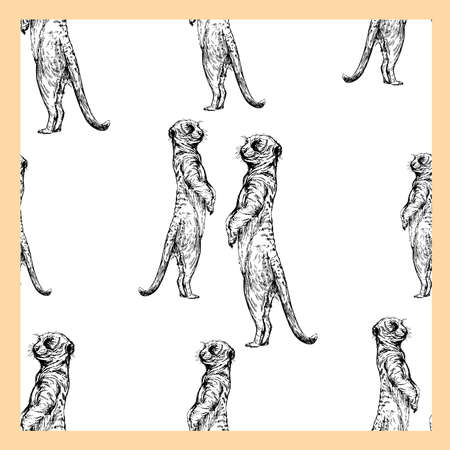 Seamless pattern of hand drawn sketch style meerkats isolated on white background. Vector illustration.