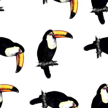 Seamless pattern of hand drawn sketch style colorful toucans. Vector illustration isolated on white background. 免版税图像