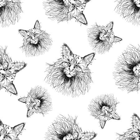 Seamless pattern of hand drawn sketch style Maine Coon cats isolated on white background. Vector illustration.