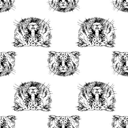 Seamless pattern of hand drawn sketch style Pallas's cats isolated on white background. Vector illustration.