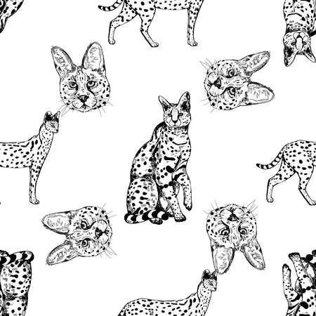 Seamless pattern of hand drawn sketch style isolated servals. Vector illustration.