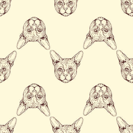Seamless pattern of hand drawn sketch style isolated Sphynx cat. Vector illustration.