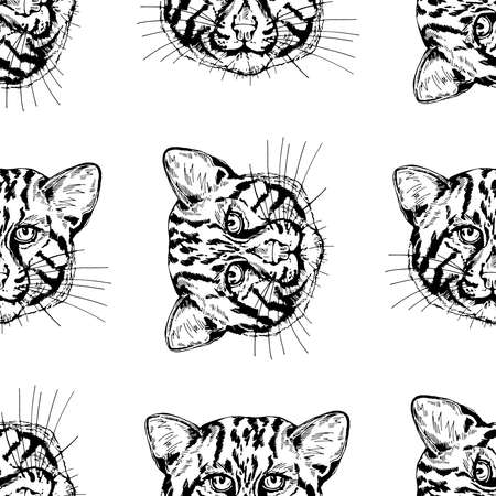 Seamless pattern of hand drawn sketch style fishing cats isolated on white background. Vector illustration. 矢量图像