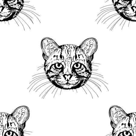 Seamless pattern of hand drawn sketch style Geoffroy's cats isolated on white background. Vector illustration.