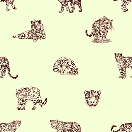 Seamless pattern of hand drawn sketch style isolated leopards. Vector illustration.