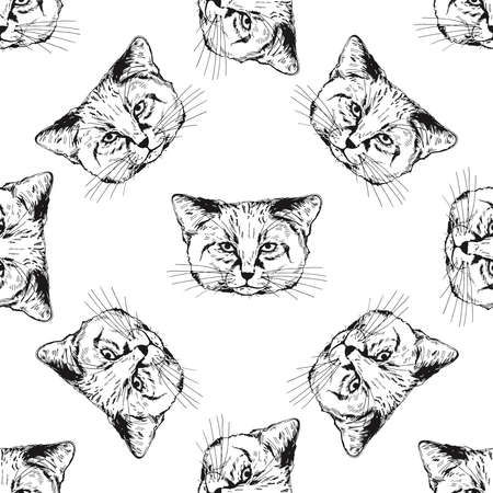 Seamless pattern of hand drawn sketch style sand cats isolated on white background. Vector illustration. 矢量图像