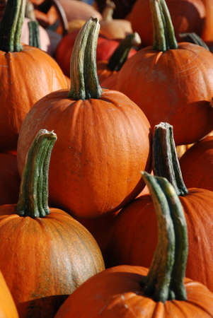 Pumpkins at a market in Germany