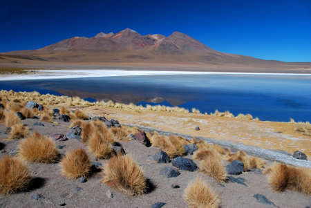Desert with lake in Bolivia Stock Photo
