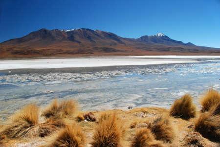atacama: Dry Desert landscape with lake in Bolivia