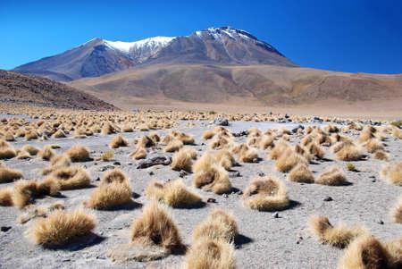 atacama: landscape of bolivia with volcano and snow Stock Photo