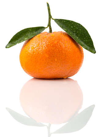 panache: clementine wiith white background and reflection Stock Photo