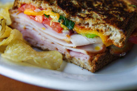 toasted sandwich: Close-up of a delicious, melting, toasted sandwich on white plate  Stock Photo