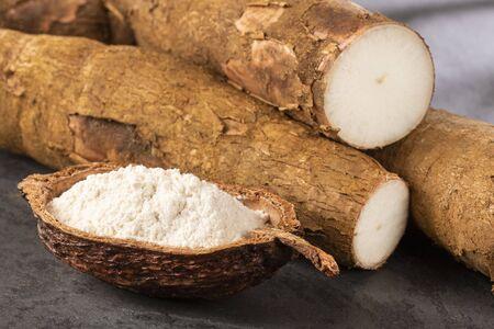 Amidon cru de yucca - Manihot esculenta
