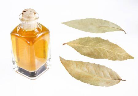 Organic laurel oil - Laurus nobilis