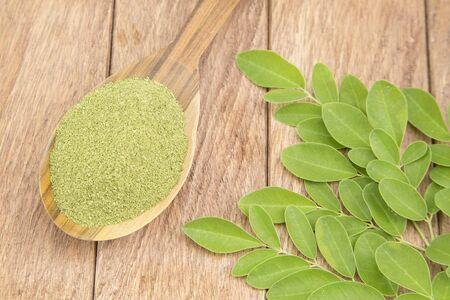 Moringa nutritional plant - Moringa oleifera Stock Photo