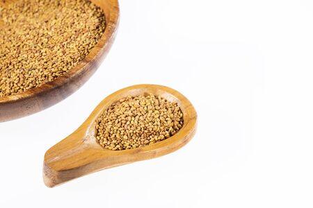 Organic Alfalfa Seeds - Medicago sativa