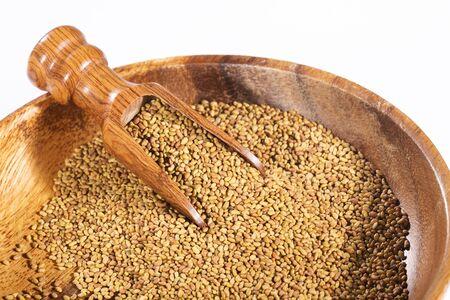 Medicago sativa - Organic Alfalfa Seeds