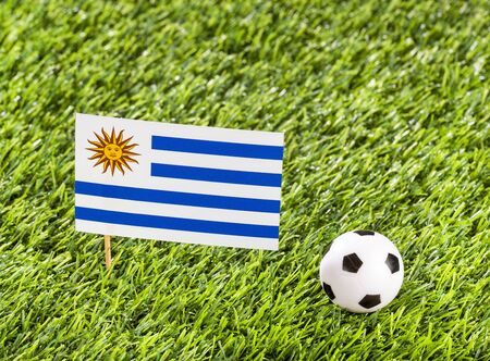 National flag of Uruguay with soccer ball in the stadium