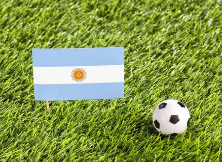 National flag of Argentina with soccer ball in the stadium