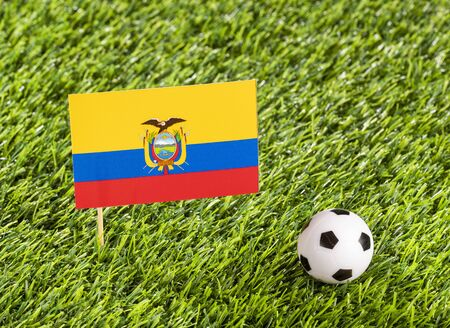 National flag of Ecuador with soccer ball in the stadium - Text space 写真素材