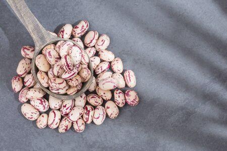 Pinto beans - Phaseolus vulgaris Archivio Fotografico