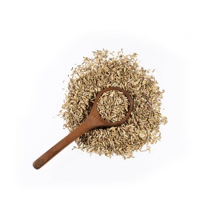 Dried fennel seeds in wooden spoon - Foeniculum vulgare